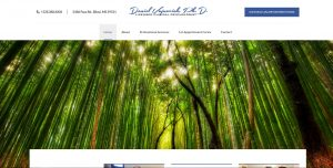 daniel-vujnovich-phd-biloxi-ms-website-design